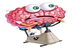 observatoriogenialidad-cerebro